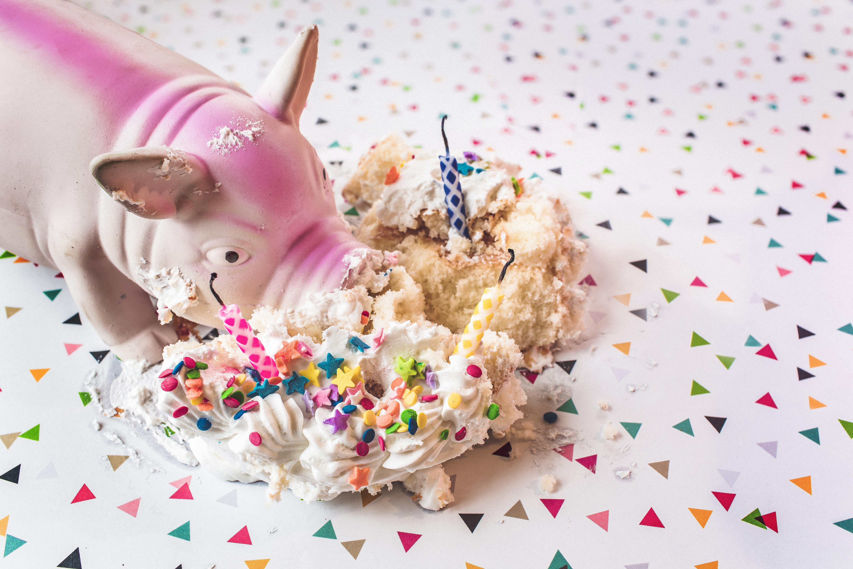 豚とケーキ